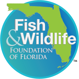 Fish and Wildlife Foundation Logo
