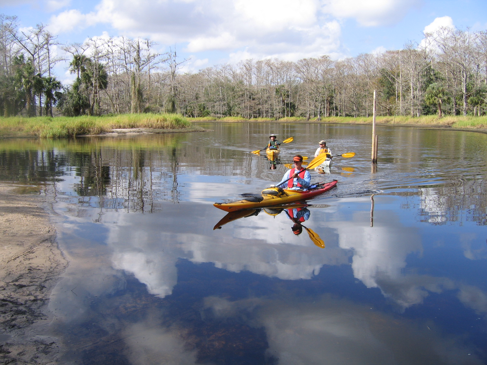 Paddlers at Fisheating Creek