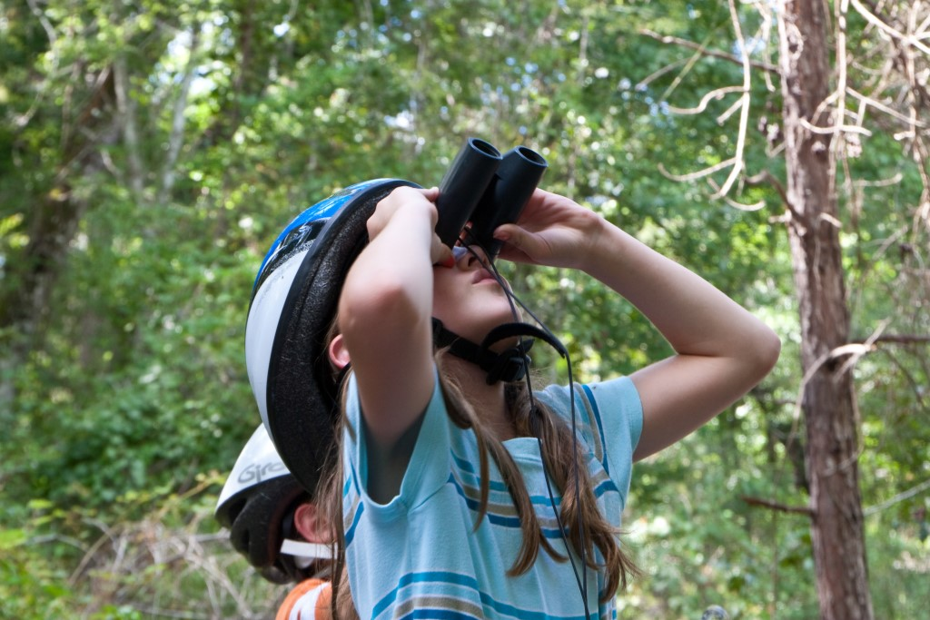 A young girl in a bicycle helmet uses a pair of binoculars to scan the forest canopy