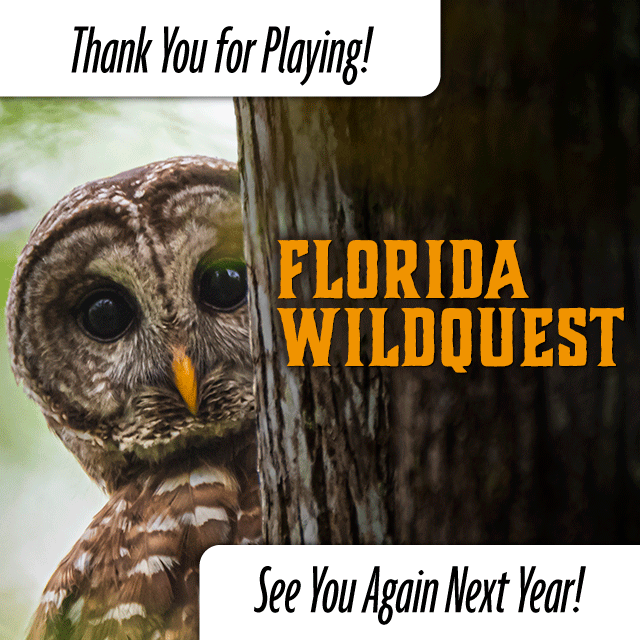 Image says Thank you for playing Floridia Wildquest. See You Again Next Year!